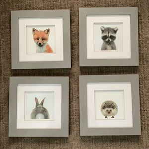 Other - 4x Grey Wooden Frames w/ Baby Animal Prints